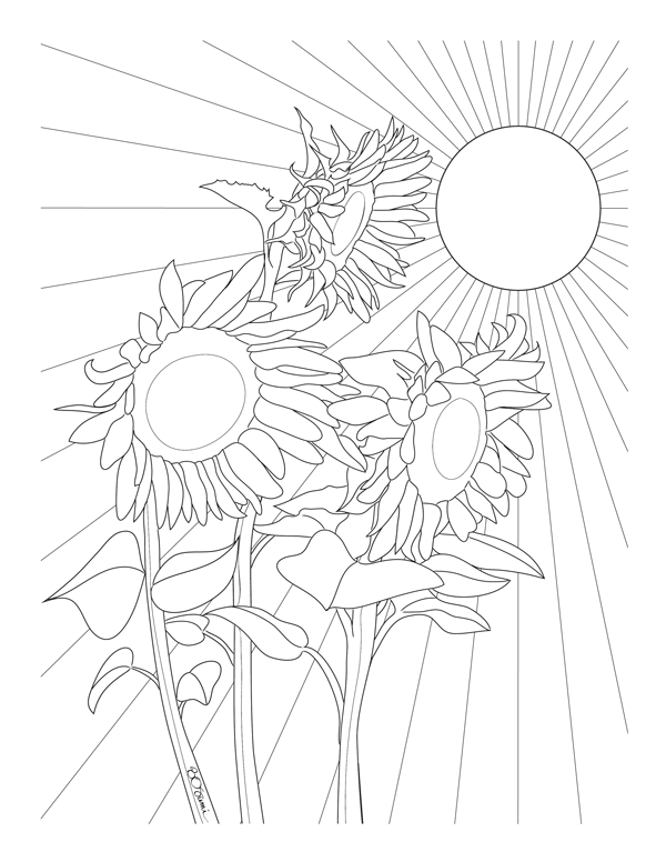 sunflower coloring sunflowers coloring page delfyn studios sunflower coloring