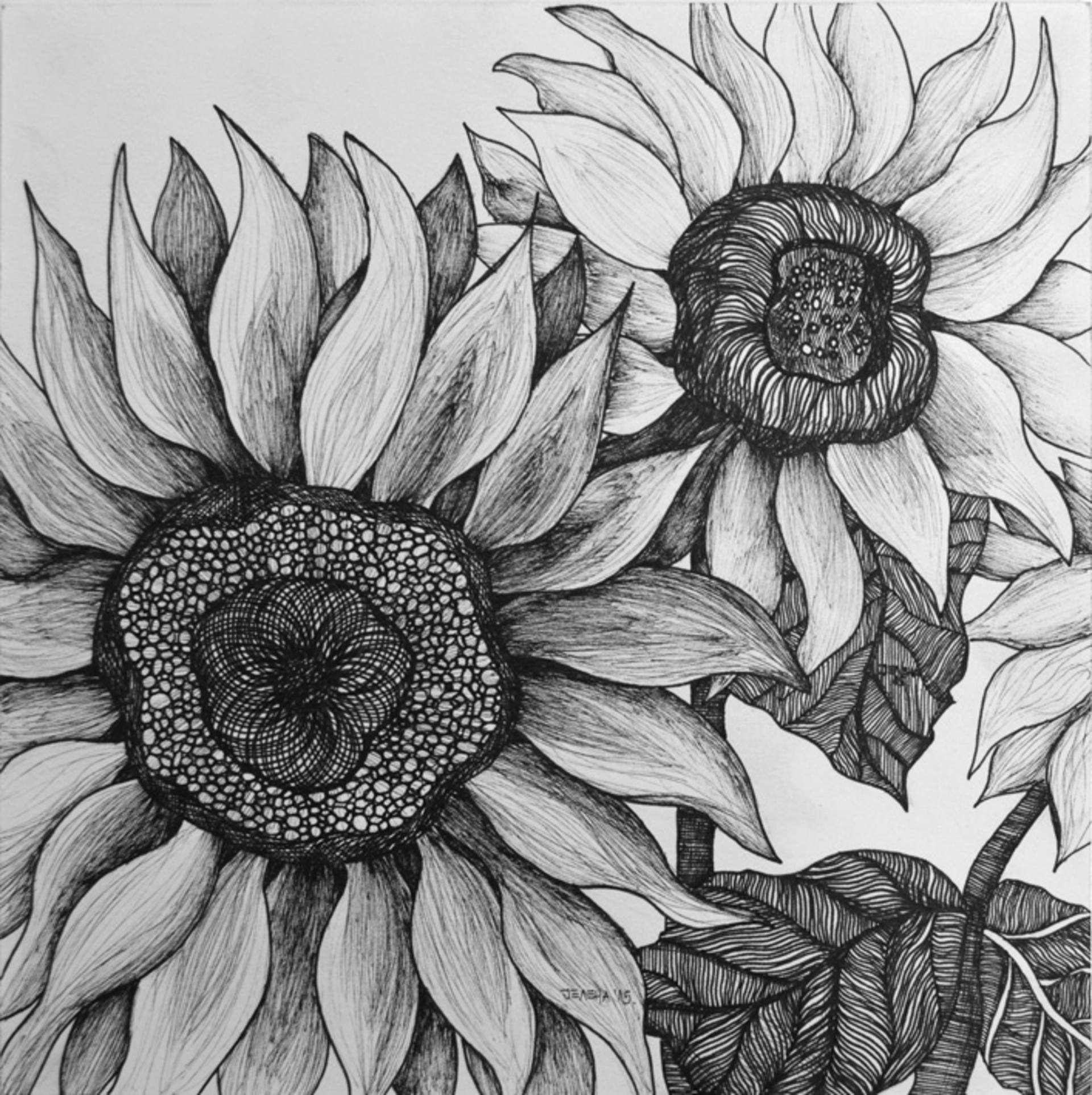 sunflower sketch single sunflower drawing by william beauchamp sketch sunflower