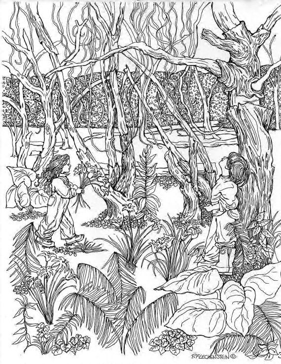 swamp coloring page swamp animals coloring pages at getdrawings free download swamp page coloring