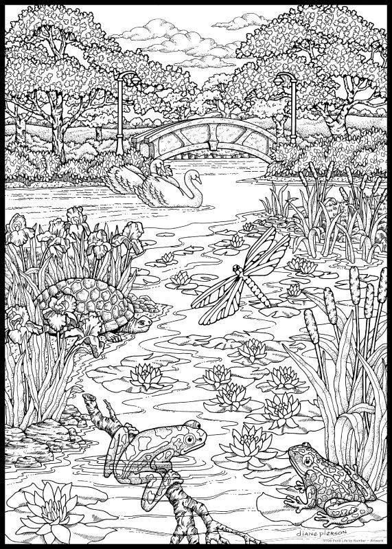 swamp coloring page swamp coloring page at getcoloringscom free printable coloring page swamp 1 1