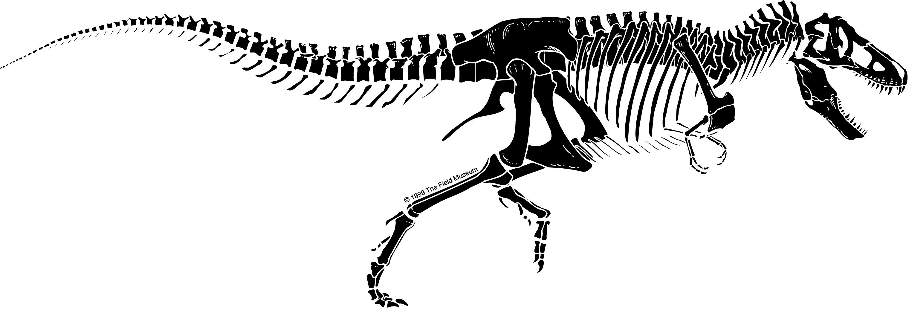 t rex outline drawing pin by sarah lamb on create art outline drawing rex t
