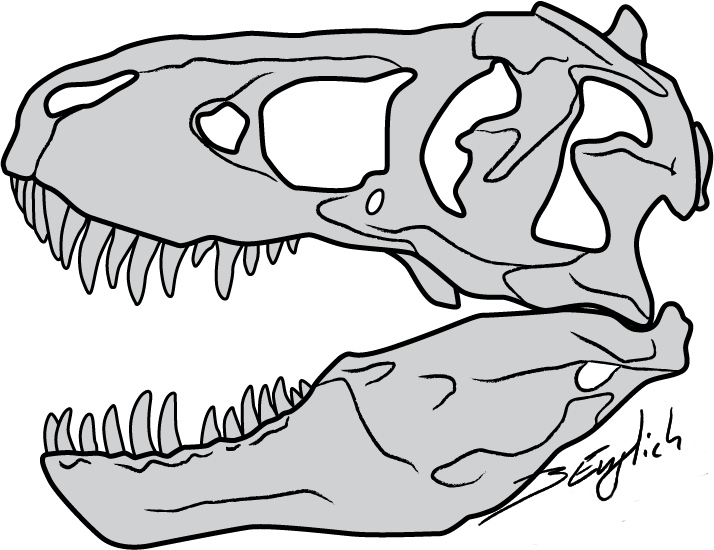 t rex outline drawing t rex drawing step by step art starts outline drawing t rex