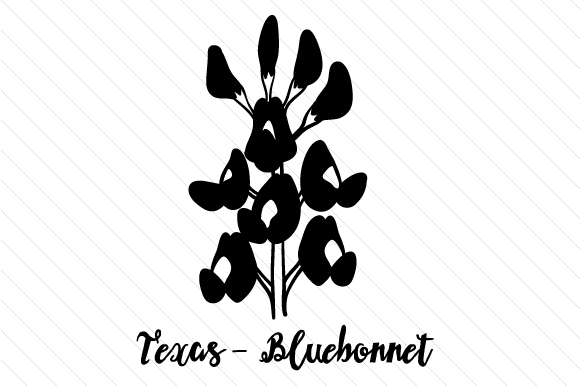 texas state flower texas state flower coloring page youngandtaecom in 2020 flower state texas
