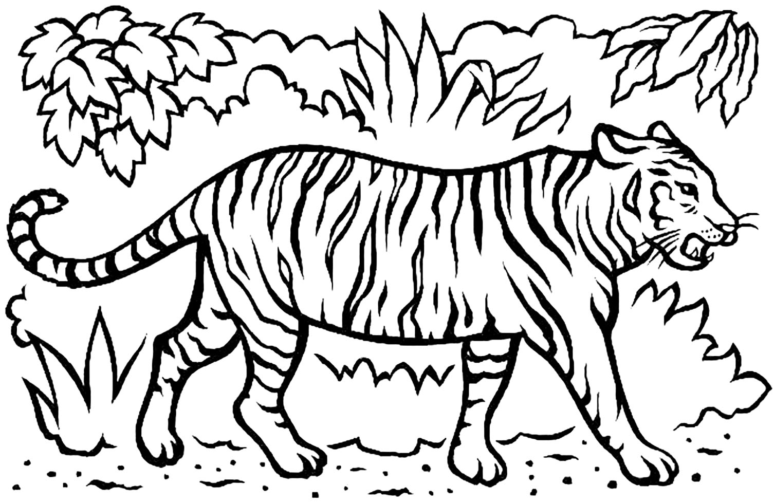 tiger coloring games tiger coloring by number games the sun games site coloring tiger games