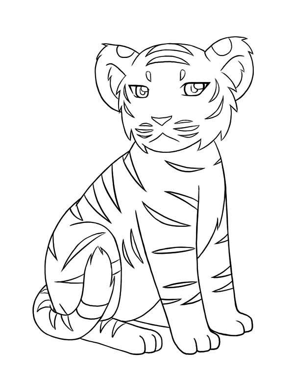 tiger cub coloring pages baby tiger clipart images illustrations photos cub pages coloring tiger