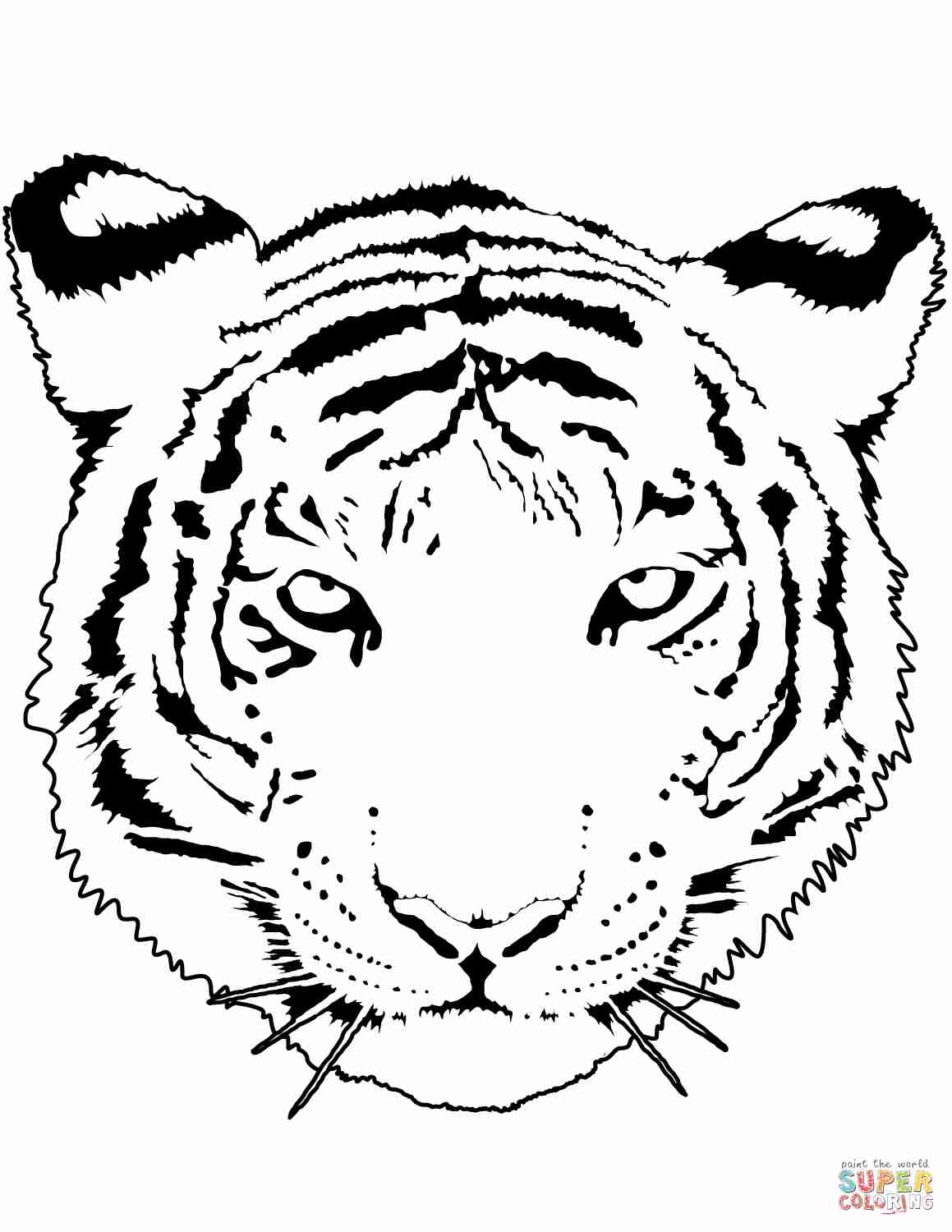 tiger cub coloring pages usssp clipart library coloring pages tiger cub