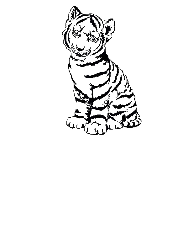 tiger cubs coloring pages tigers two tiger cubs in a wicker basket coloring page pages tiger cubs coloring