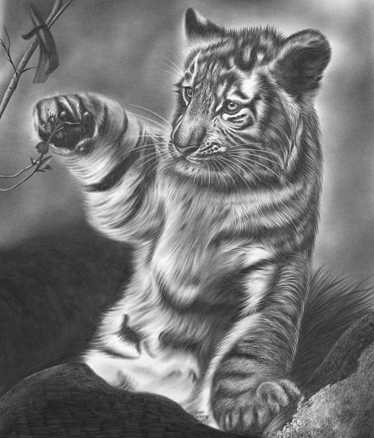 tiger drawing experiments with brushes and strokes pencil sketching tiger drawing