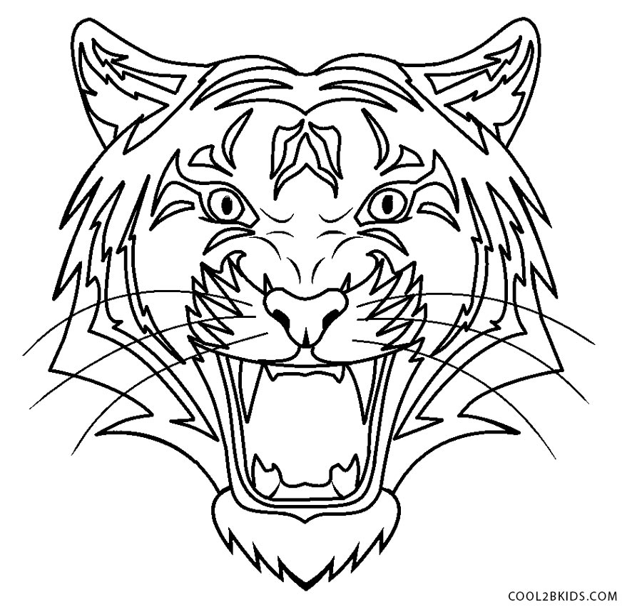 tiger face coloring free printable tiger coloring pages for kids tiger coloring face