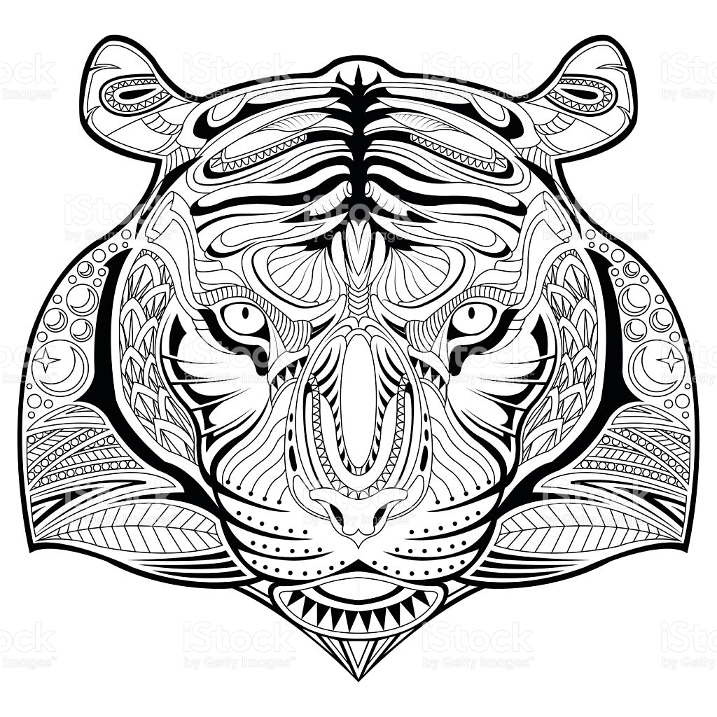 tiger face coloring tiger face coloring page clipart best tiger face coloring