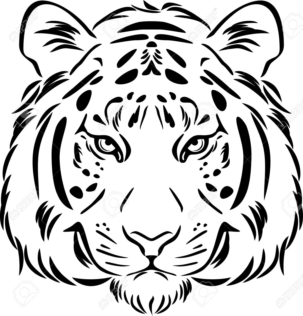 tiger face coloring tiger outline drawing at getdrawings free download tiger coloring face