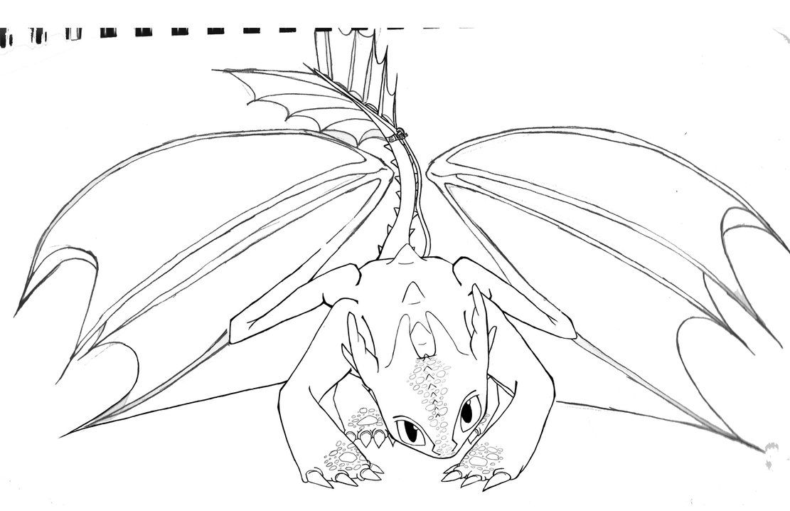 toothless dragon coloring pages how to train your dragon coloring pages toothless at dragon toothless coloring pages