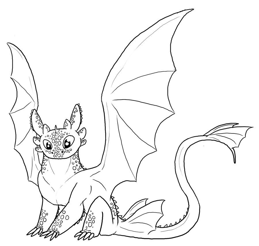 toothless dragon coloring pages pictures of toothless from how to train your dragon toothless dragon pages coloring
