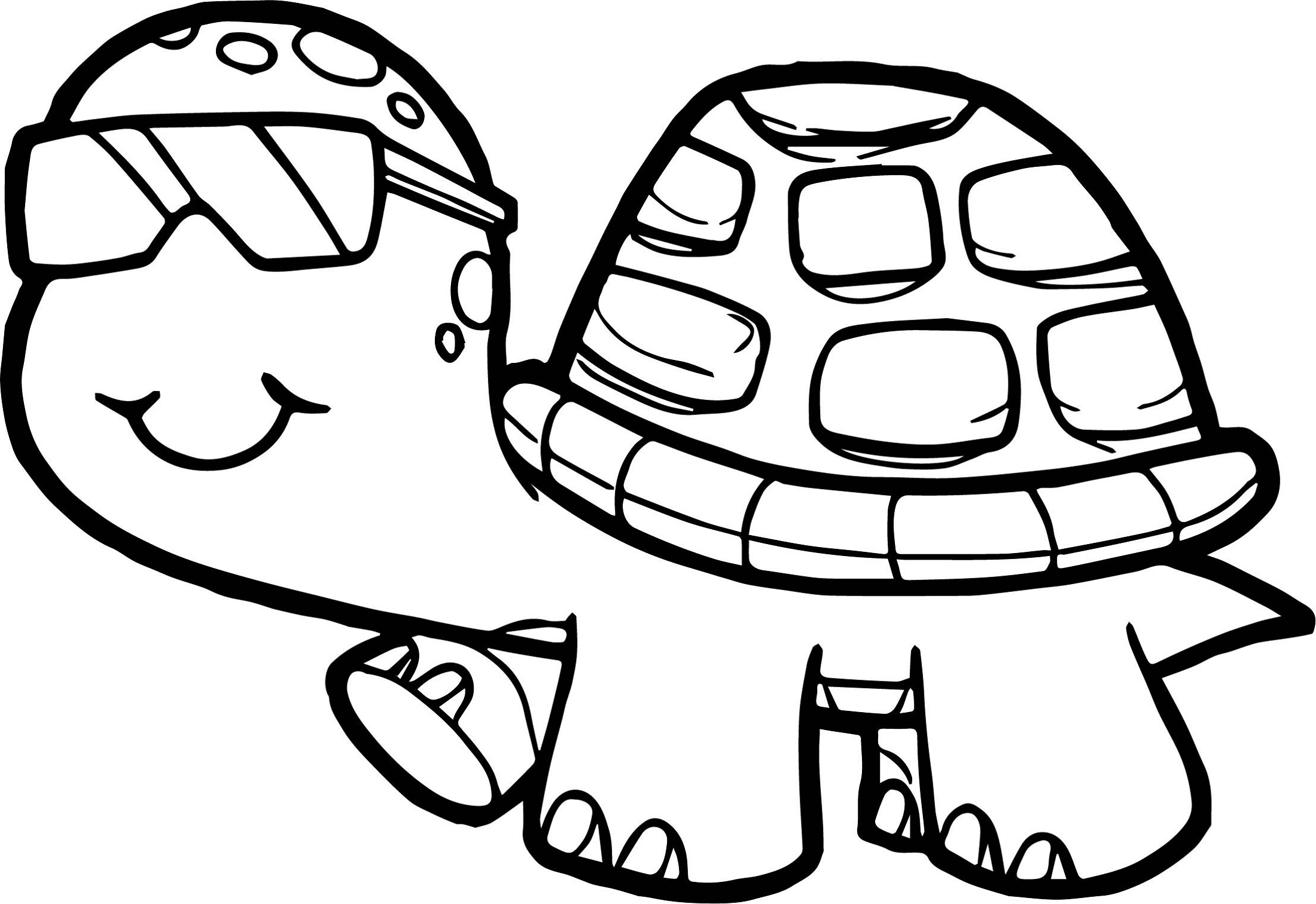 tortoise coloring page incredible turtle turtles adult coloring pages coloring tortoise page