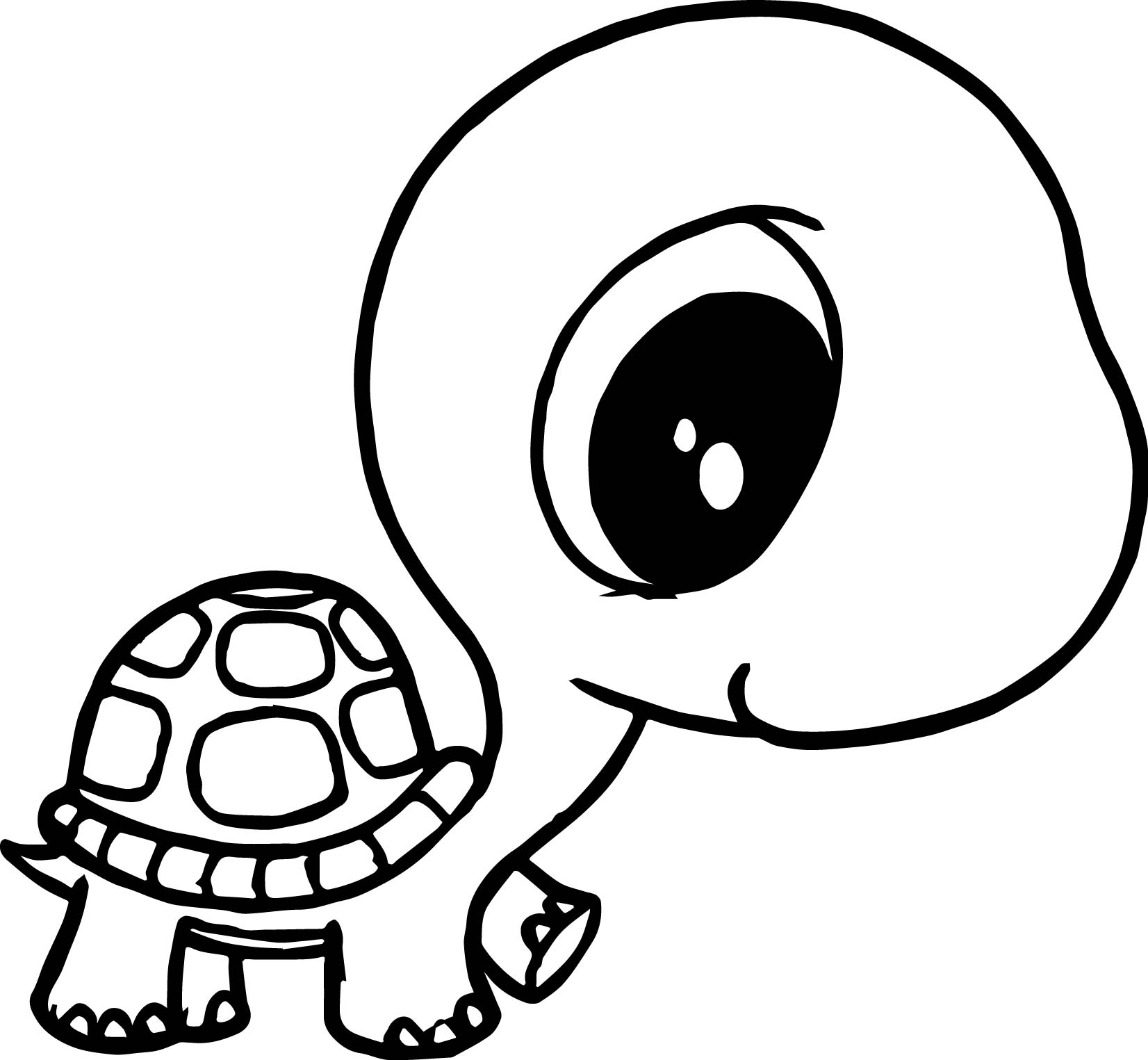 tortoise coloring page red eared slider turtle coloring pages k5 worksheets tortoise page coloring