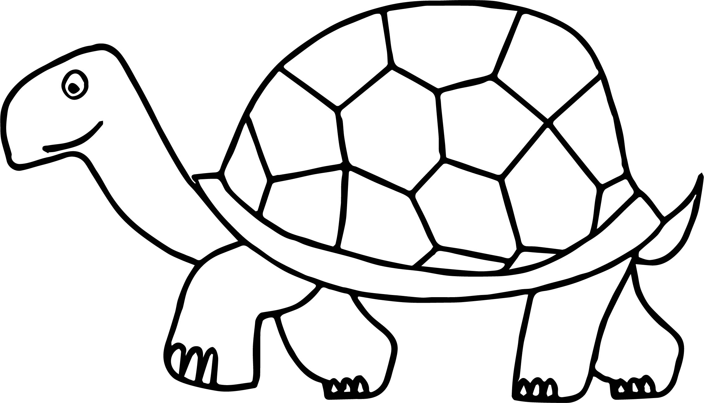tortoise colouring pictures turtles to color for kids turtles kids coloring pages pictures colouring tortoise