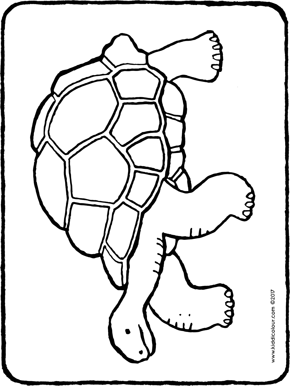tortoise colouring pictures walking tortoise turtle coloring page wecoloringpagecom pictures colouring tortoise