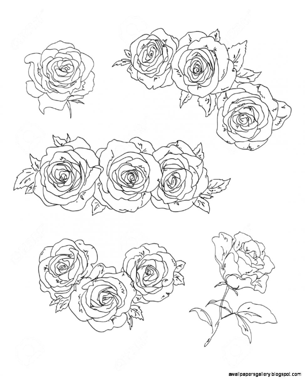 traceable pictures of flowers 37 best traceable art for journaling bibl images on of pictures flowers traceable