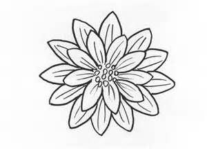 traceable pictures of flowers flower vector png transparent image flower sunflower of flowers traceable pictures