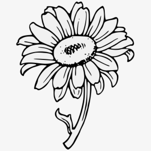 traceable pictures of flowers simple flower patterns to trace coloring home pictures flowers traceable of