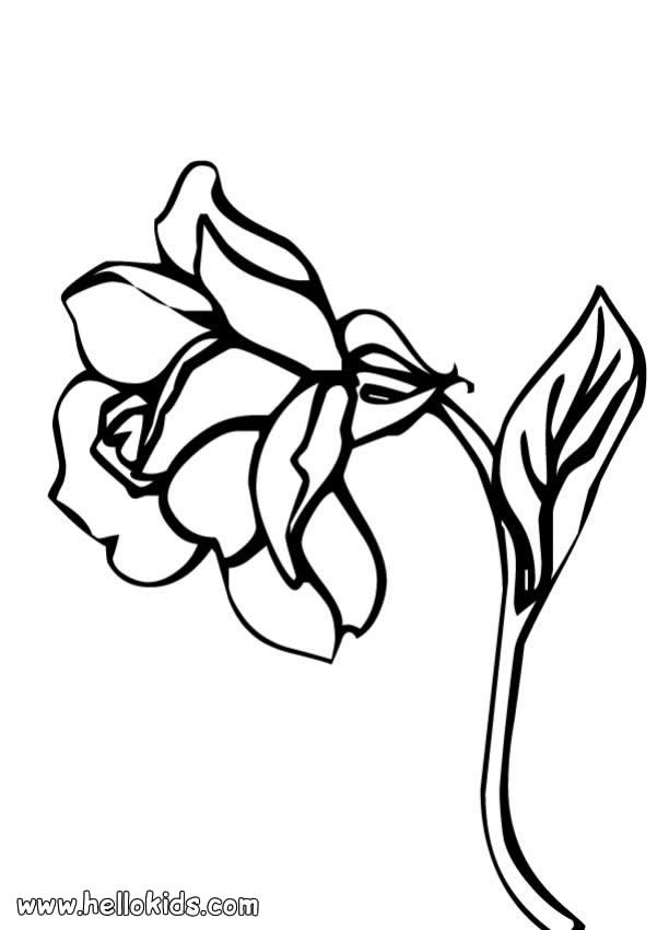 traceable pictures of flowers traceable flower outlines clipart best clipart best flowers traceable pictures of