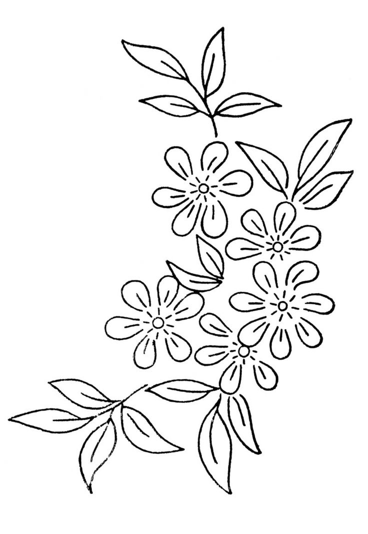 traceable pictures of flowers traceable roses rose heraldry transparent cartoon of traceable pictures flowers