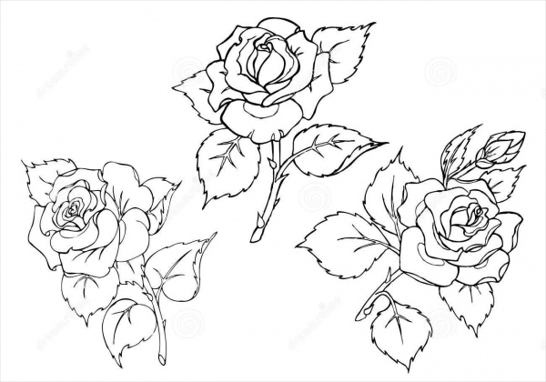 traceable pictures of flowers tracing lovetoteachorg pictures traceable of flowers