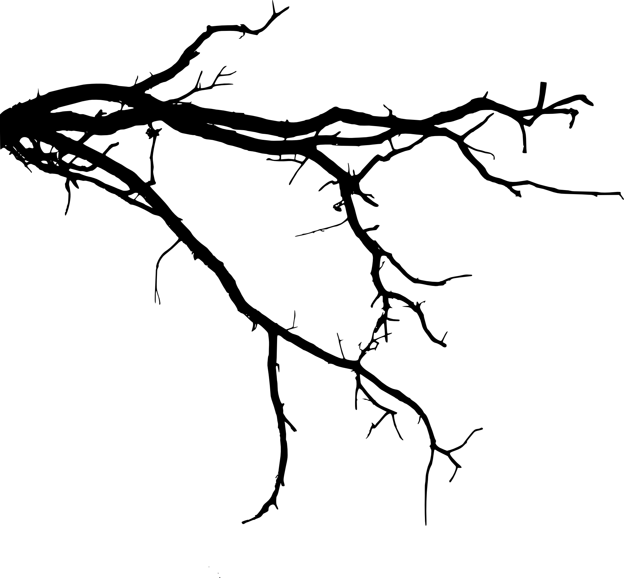 tree branch silhouette 12 tree branch silhouette png transparent vol 3 branch tree silhouette