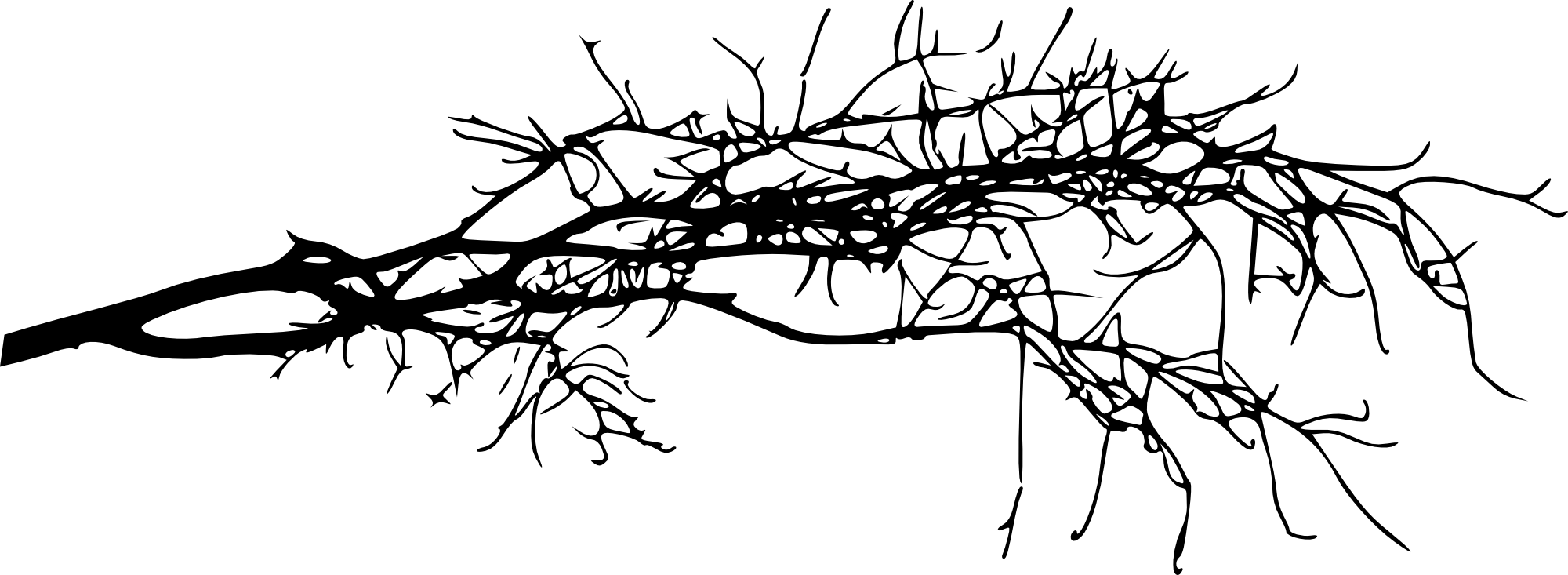 tree branch silhouette 15 simple tree branch silhouettes png transparent silhouette branch tree 1 1