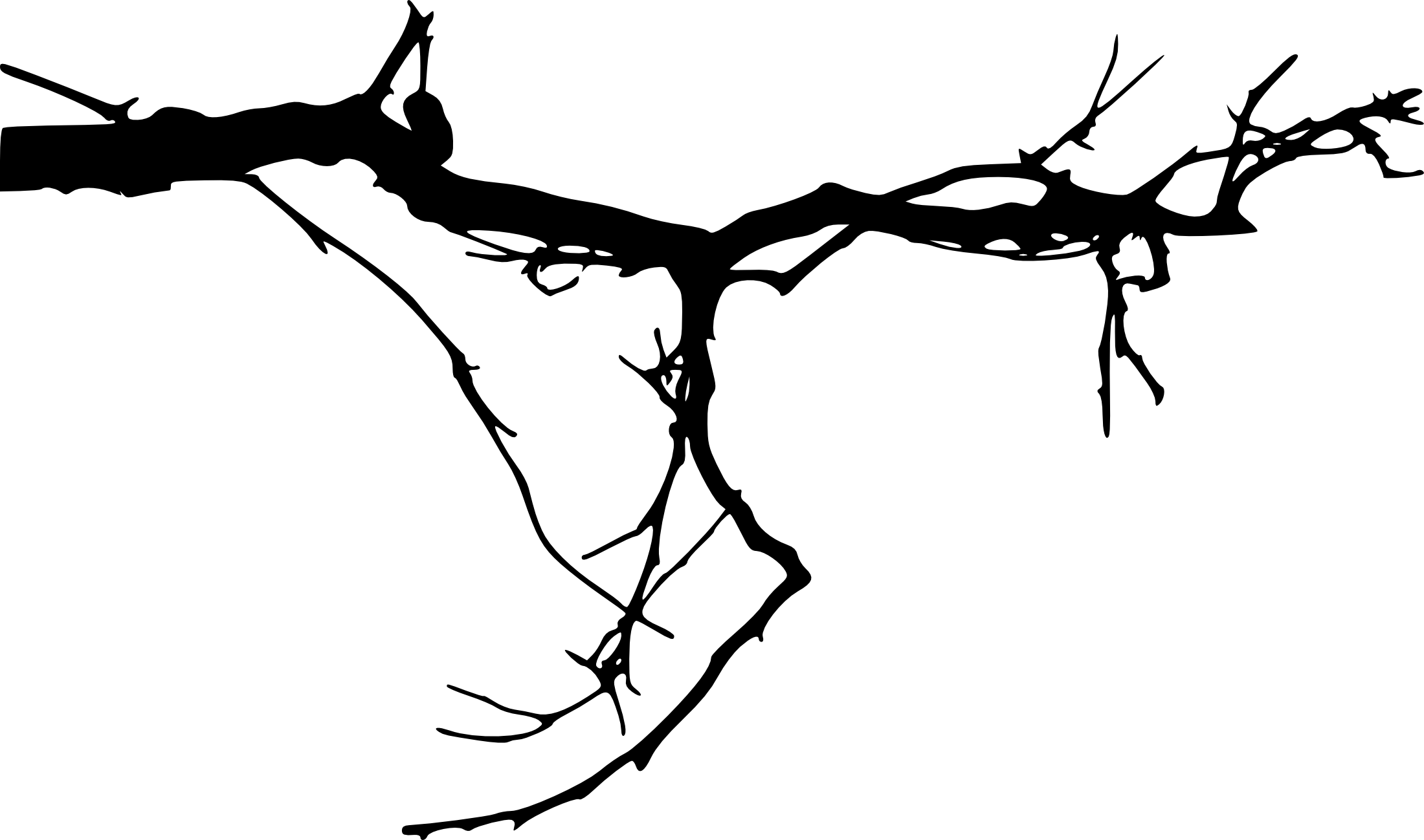 tree branch silhouette tree branch silhouette free vector silhouettes branch tree silhouette