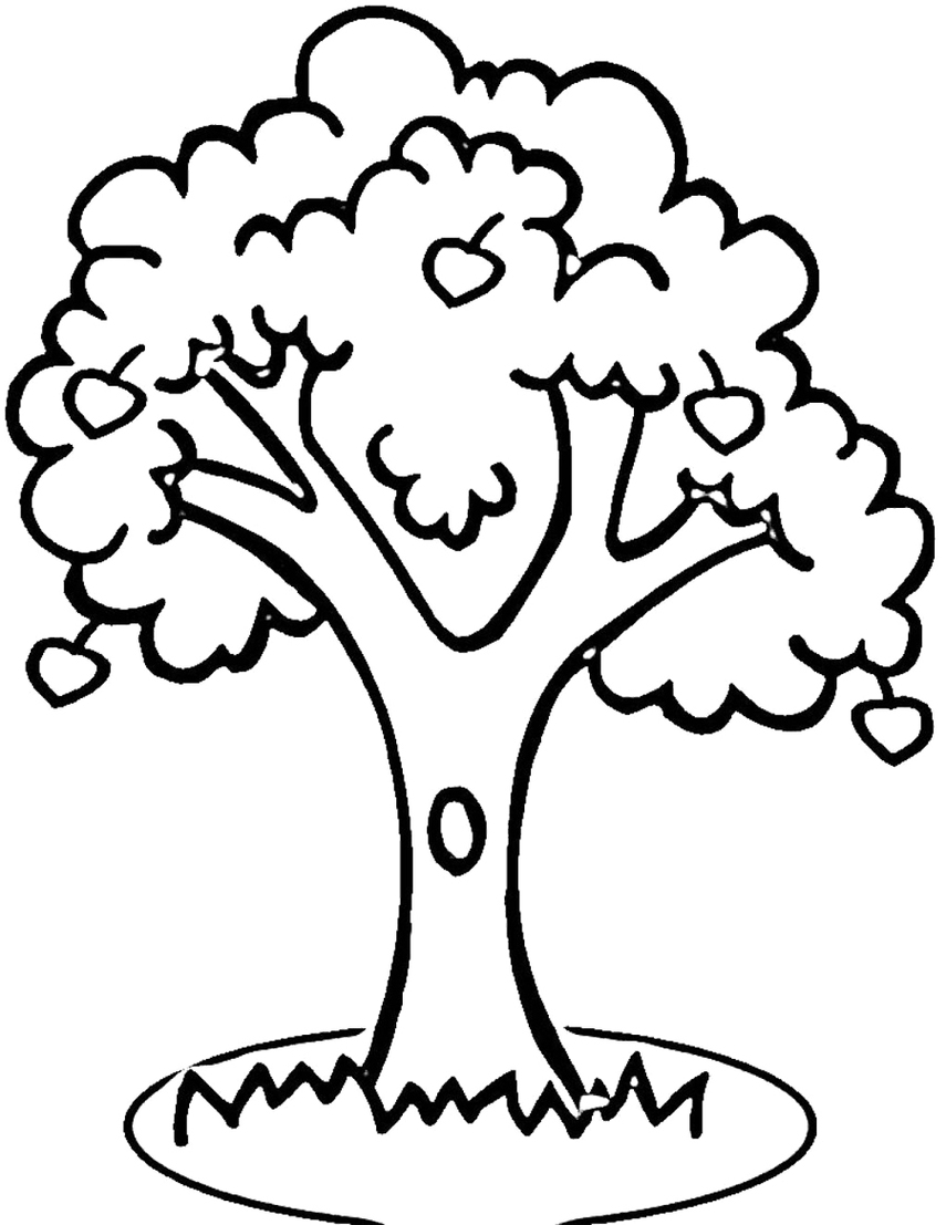 tree clipart coloring bare tree coloring page coloring home coloring clipart tree