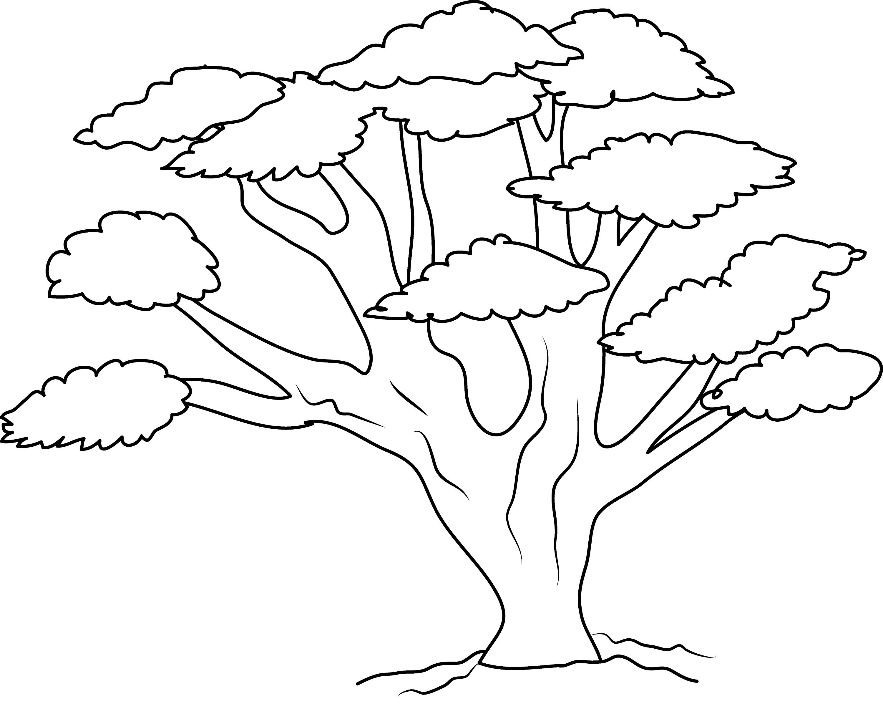 tree clipart coloring colouring page of tree clipart best tree clipart coloring