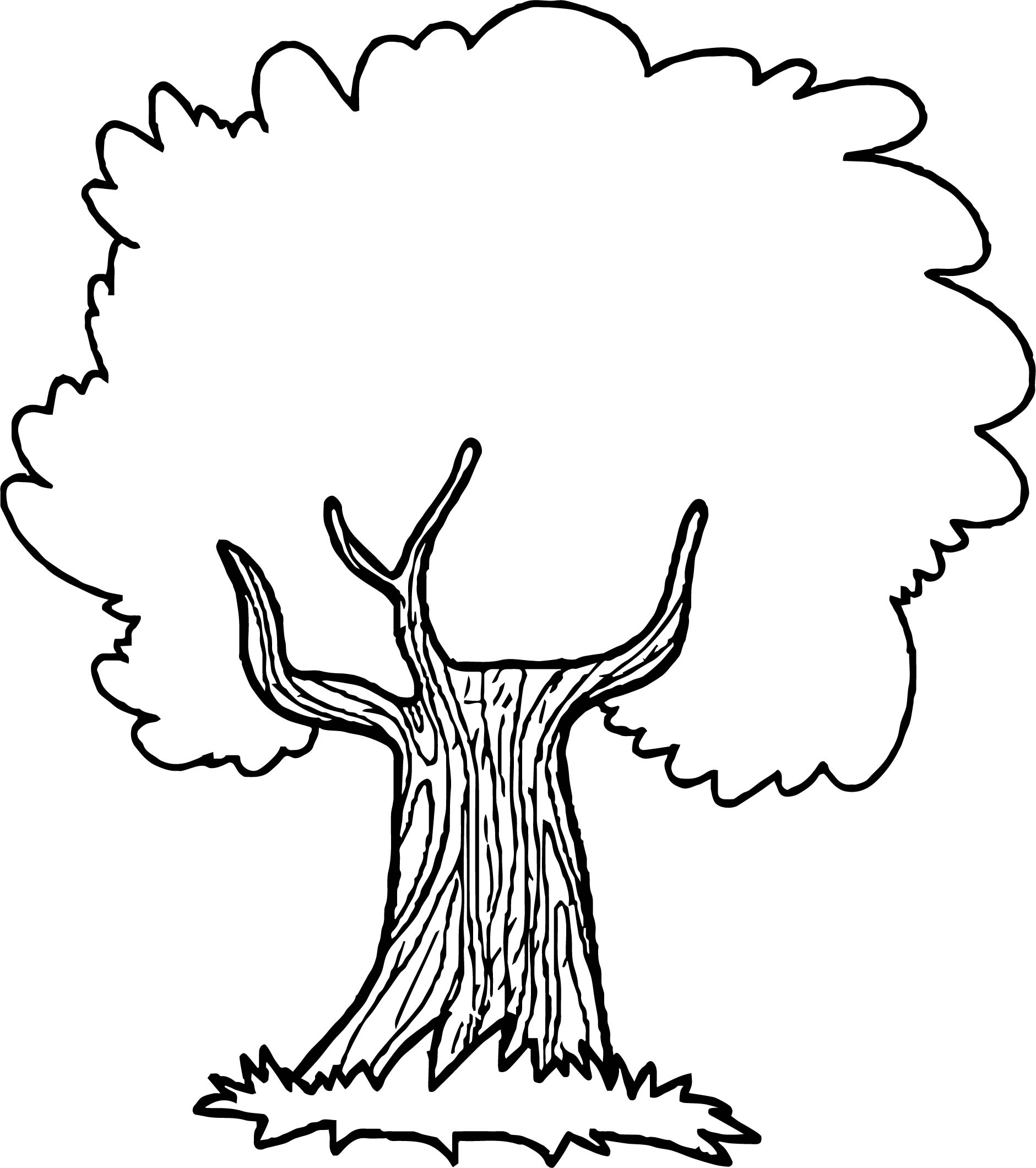 tree clipart coloring fall tree coloring page free printable coloring pages tree coloring clipart