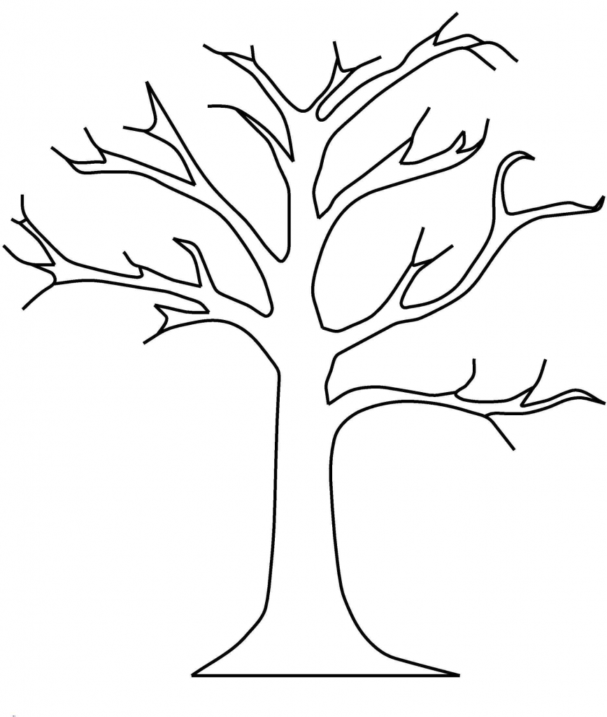 tree clipart coloring free printable tree coloring pages for kids 14 pics how clipart coloring tree