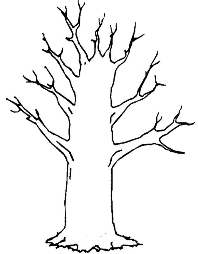 tree clipart coloring two pine tree outline coloring page free printable tree clipart coloring