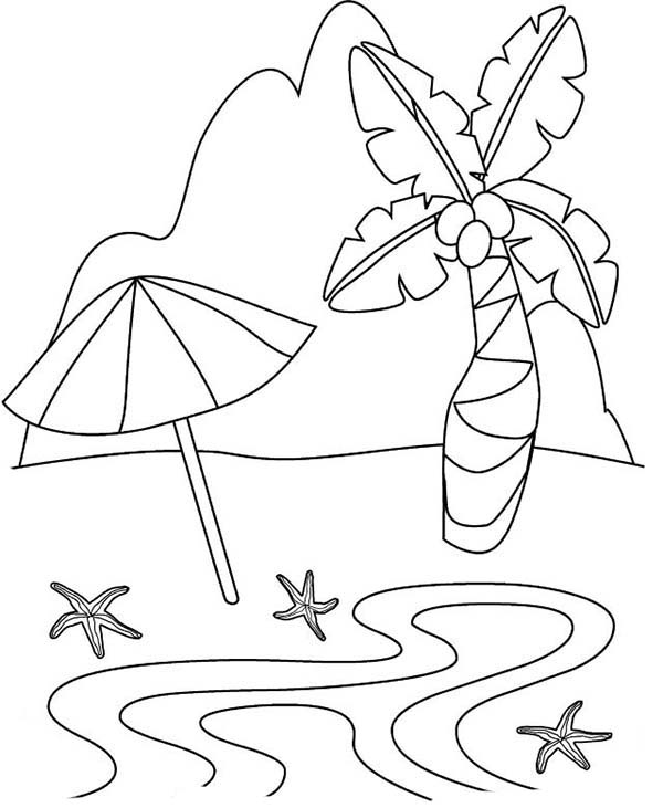 tropical beach coloring pages seasons coloring pages coloringrocks beach pages coloring tropical