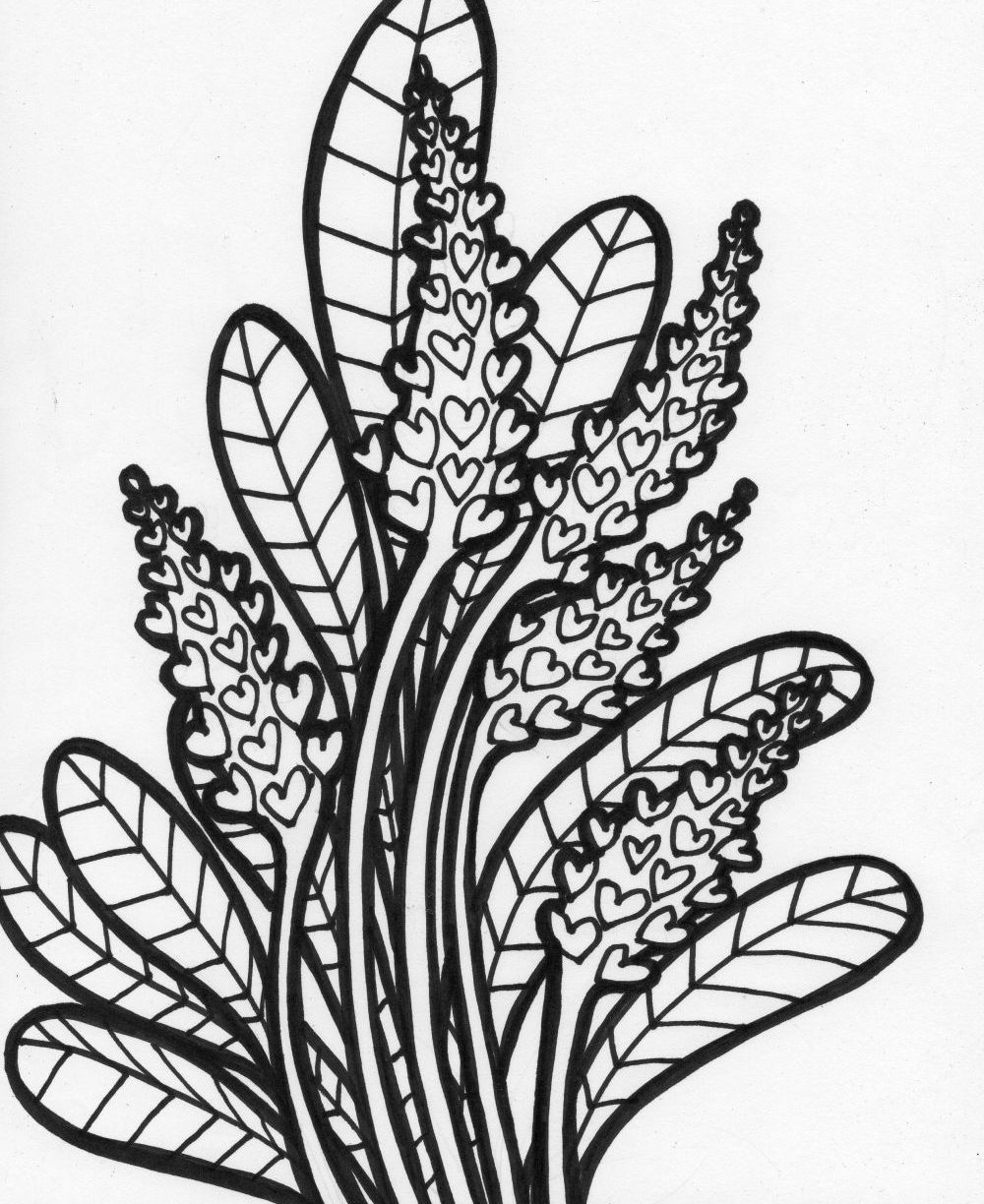 tropical coloring sheets tropical plants and hibiscus flowers coloring book page coloring sheets tropical