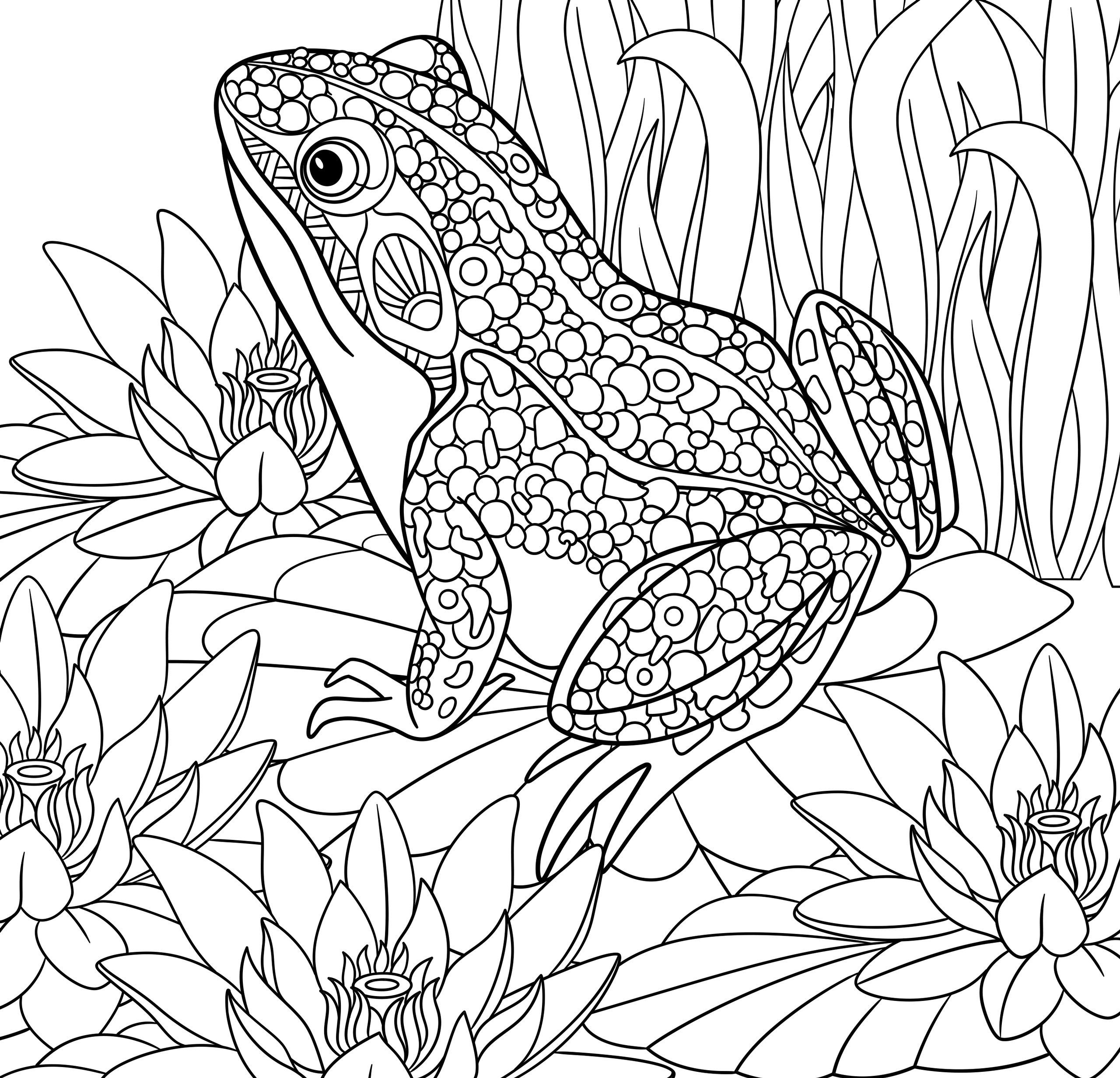 tropical coloring sheets tropical rainforests coloring pages coloring home sheets coloring tropical