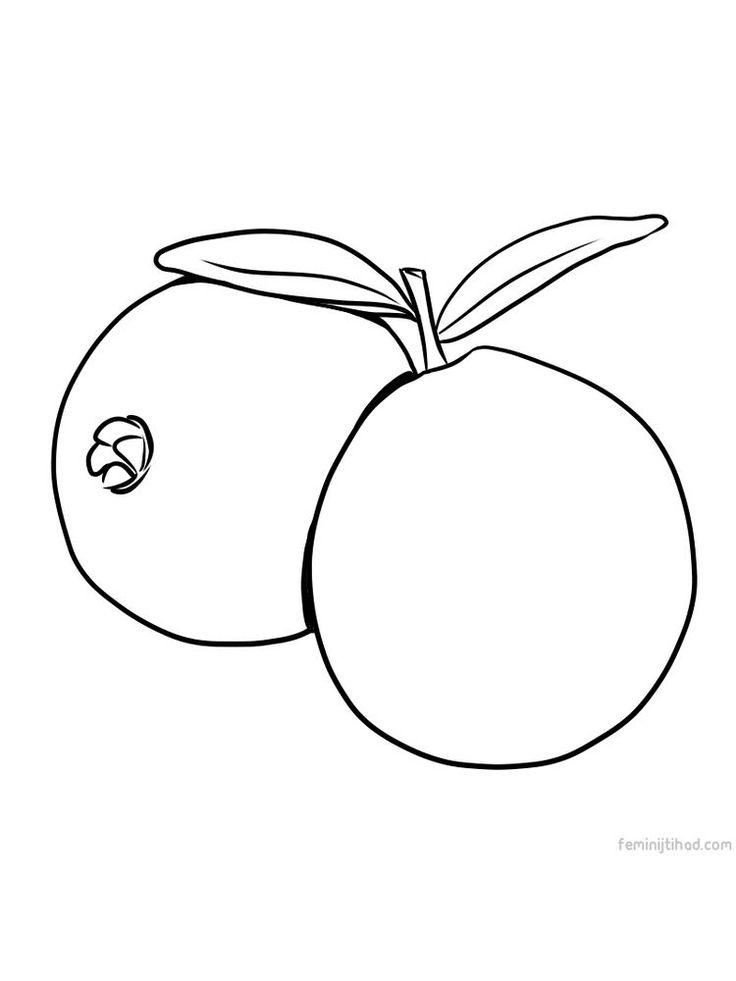 tropical fruits coloring pages apple coloring pages for preschoolers at getcoloringscom coloring tropical fruits pages
