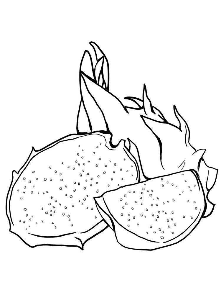 tropical fruits coloring pages dragon fruit coloring page line art for coloring books for tropical coloring fruits pages