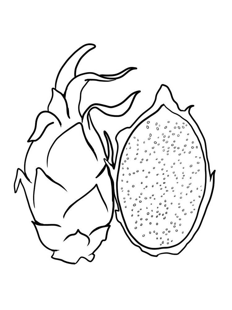 tropical fruits coloring pages passion fruit coloring sheet pdf passion fruit is one of pages tropical coloring fruits