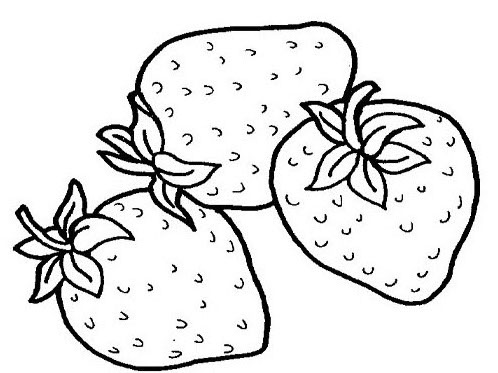 tropical fruits coloring pages watermelon banana and pineapple on free coloring books pages coloring pages tropical fruits