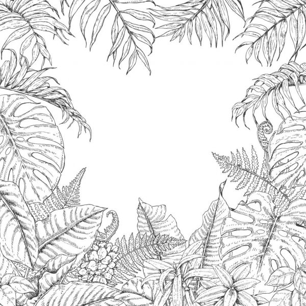 tropical leaf coloring 10 free tropical leaves printables instant art coloring tropical leaf