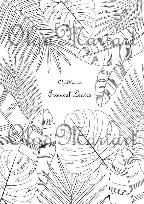 tropical leaf coloring coloring natural tropical palm leaves vector illustration coloring tropical leaf