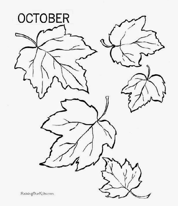 tropical leaf coloring tropical leaves coloring pages at getcoloringscom free coloring leaf tropical