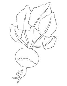 turnip pictures color pin by loeta marshall on story coloring pages fairy color pictures turnip