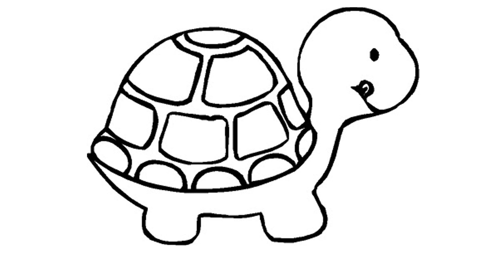 turtle coloring book page free turtle coloring pages book turtle coloring page