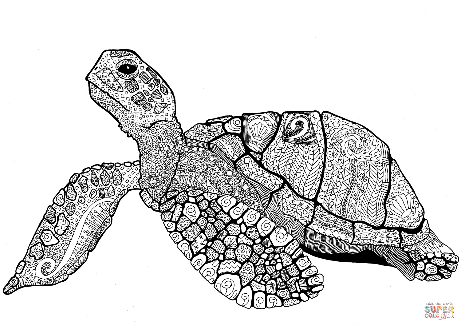 turtle coloring book page get this preschool turtle coloring pages to print nob6i turtle coloring page book