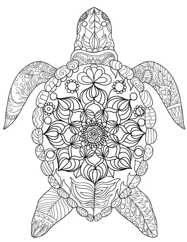 turtle coloring pictures to print get this online printable turtle coloring pages rczoz print to pictures turtle coloring