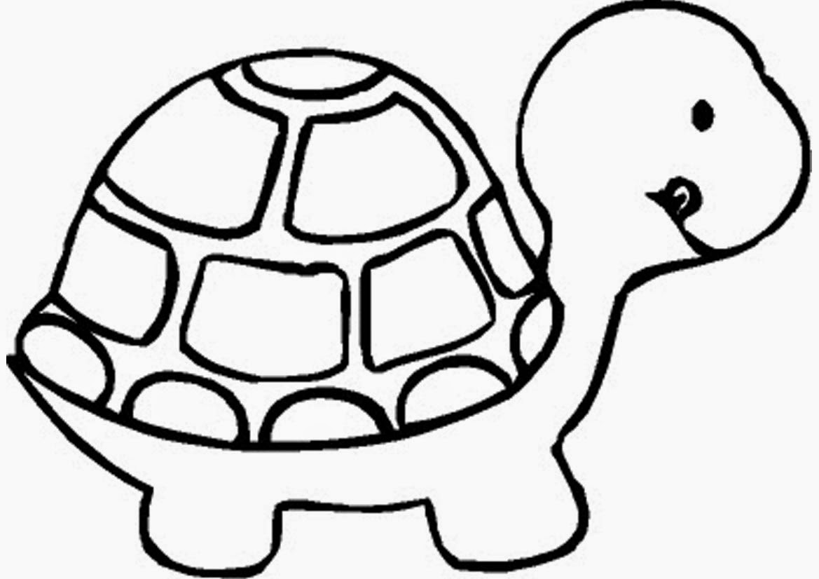 turtle printable coloring pages cute turtle coloring pages coloring printable turtle pages